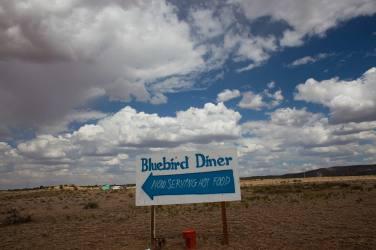 blue-bird-diner-sign 2