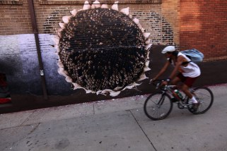 native-pride-on-running's-wall-5-(sunflower-+-cyclist)