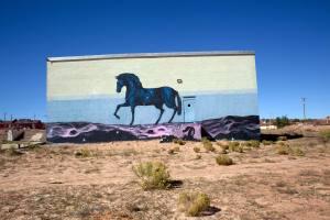 jaz's-horse