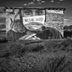 jc at black mesa (b+w)